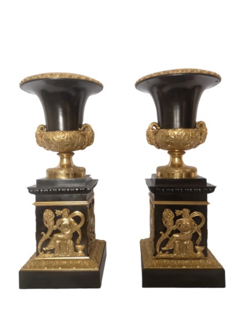 Pair Of Fine 19th Century French Bronze And Gilt Bronze Urns